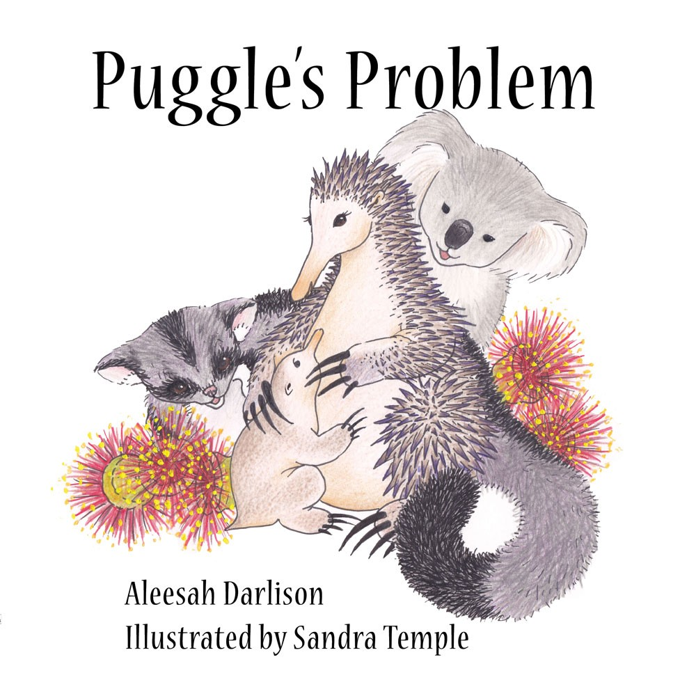 A chat with illustrator Sandra Temple